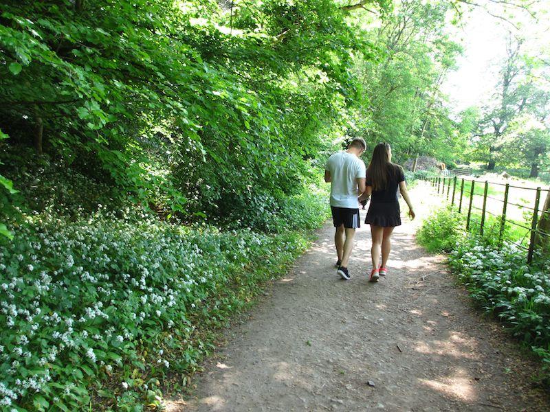 Woodland walk - Bath car-free adventures