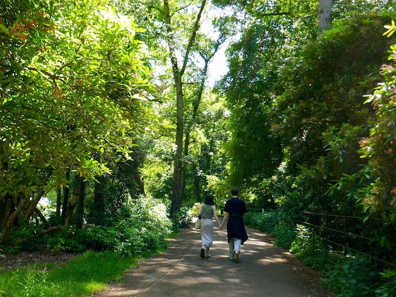 People walking in woods - Nottingham car-free guide
