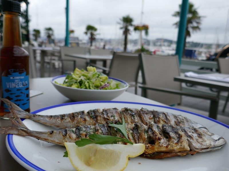 Grilled fish on plate - Torquay car-free adventures