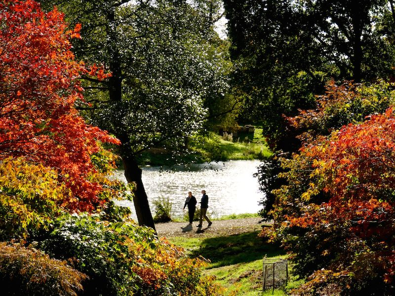 Yorkshire Arboretum - York car-free adventures