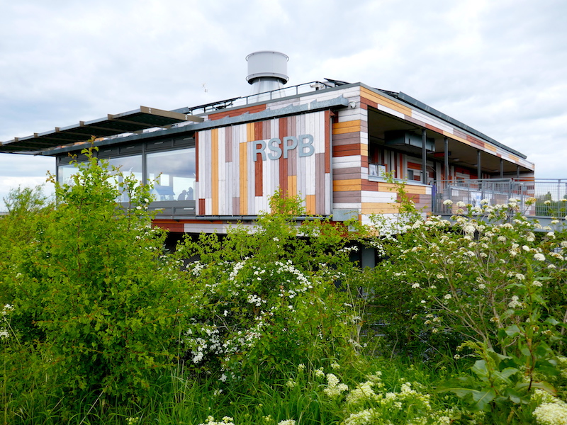 RSPB Rainham Marshes visitor centre - from our car-free summer adventures