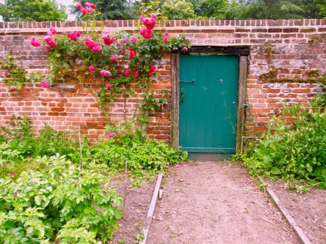 Blue door with roses at Stanstead Bury walled garden