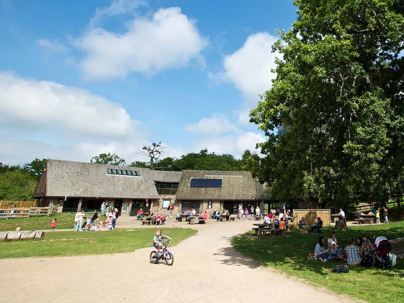 Beechenhurst - on our tour of tea and cakes car-free venues