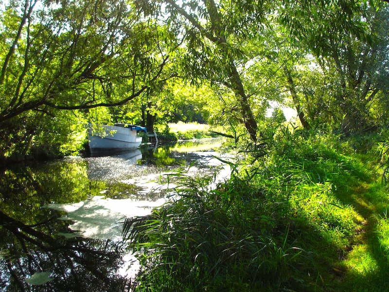 Riverside path - Autumn colour car-free trips