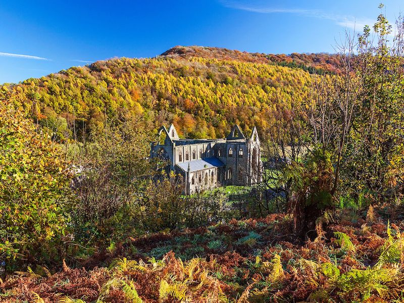 Tintern Abbey - spotted on our Autumn colour car-free trips