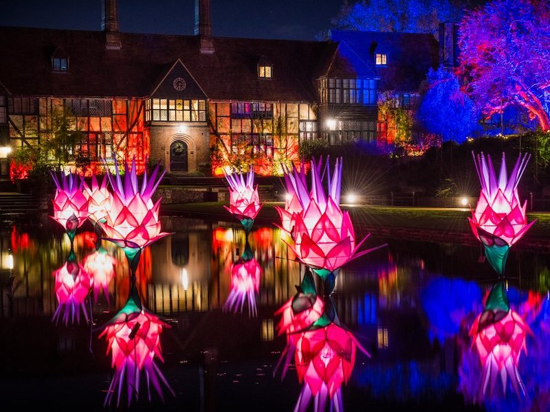 RHS Wisley garden lights - Car-free trips to see Christmas Magic.