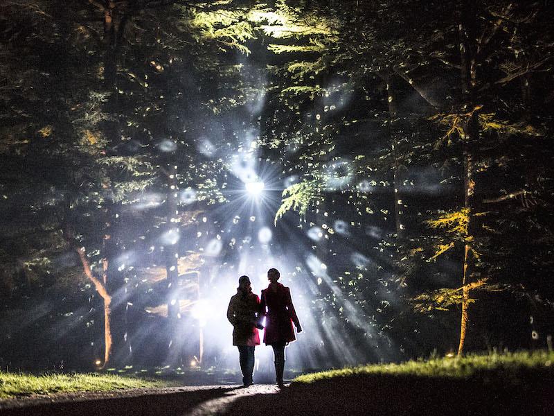 Westonbirt Aboretum lights - Car-free trips to see Christmas Magic.